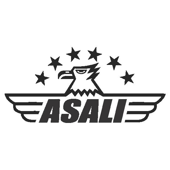 Asali Motors